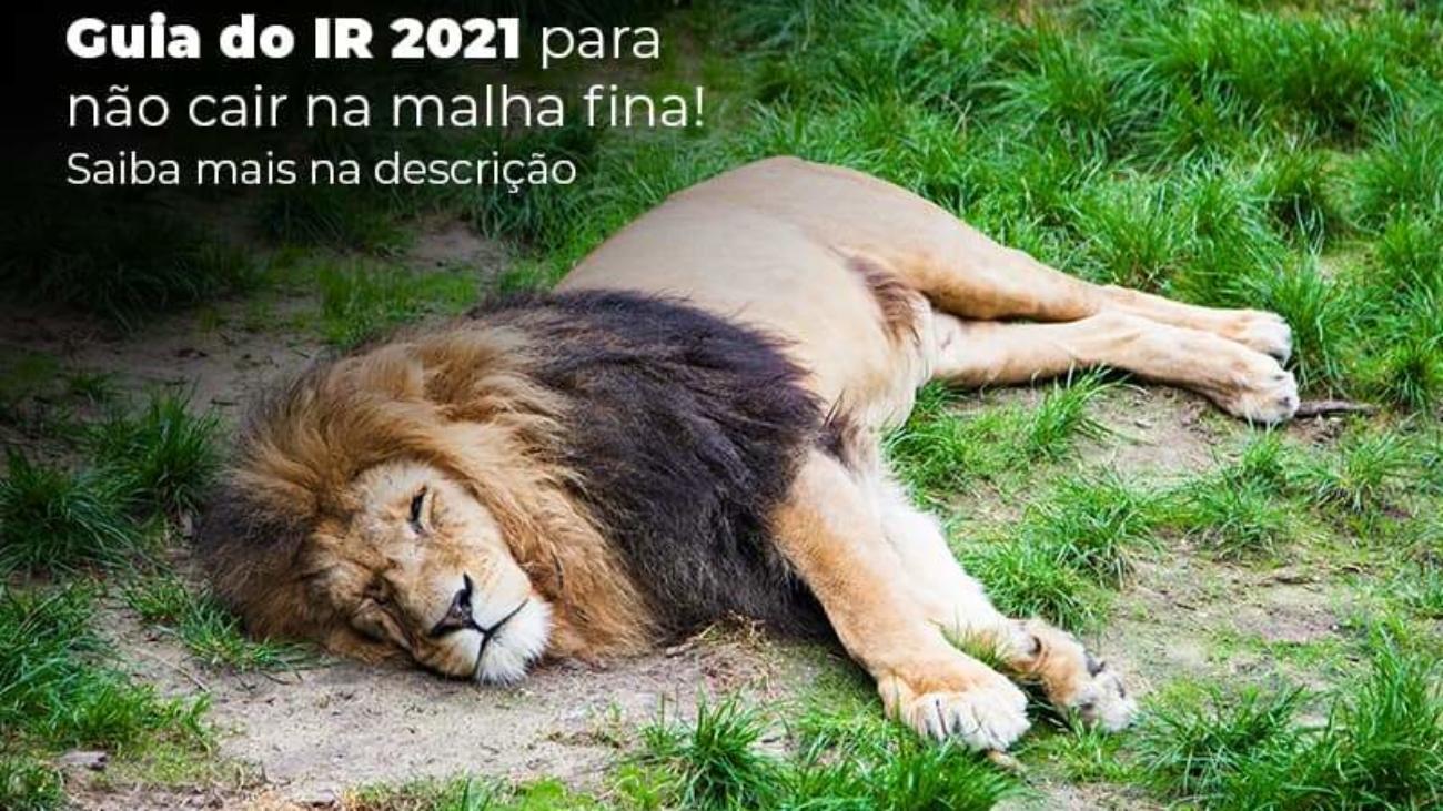 Guia Ir 2021 Para Nao Cair Na Malha Fina Saiba Mais Na Descricao Post 1 - Acredit