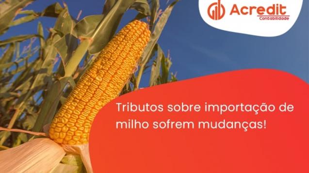 Tributos Sobre Importação De Milho Sofrem Mudanças! Acredit - Acredit